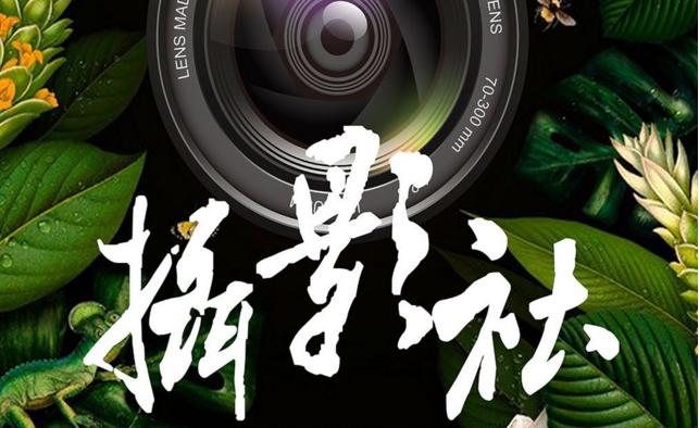 力迈中美国际学校摄影社